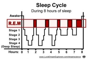 Good Habits for students: REM sleeping cycle